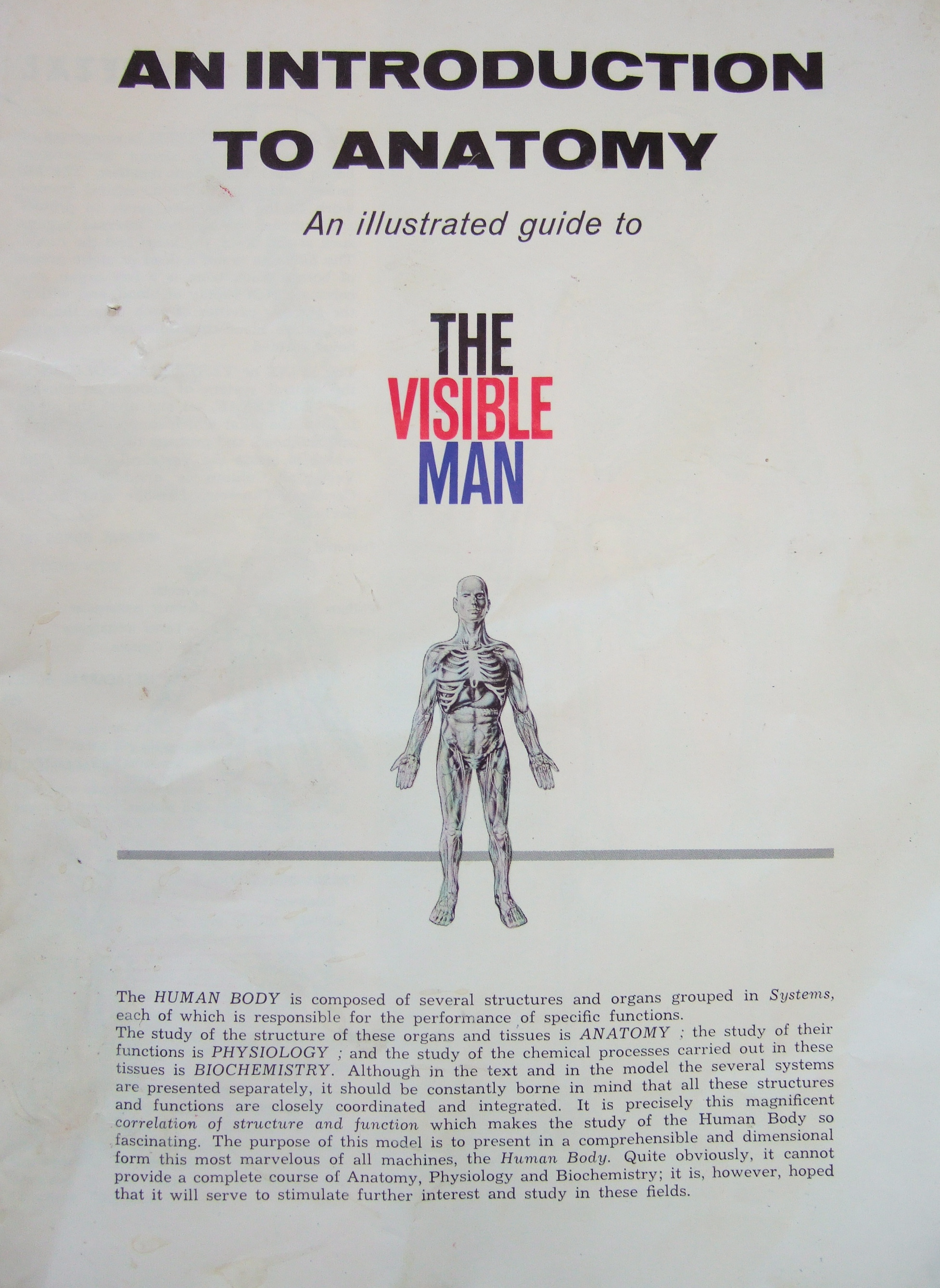 the visible man found | Clive Hicks-Jenkins\' Artlog: