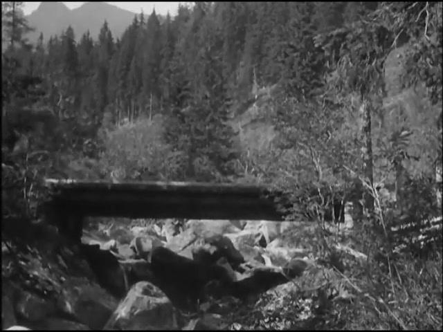 Nosferatu-1929-05.jpg
